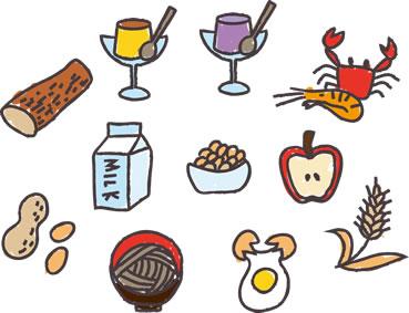 セルライトには基礎代謝が重要